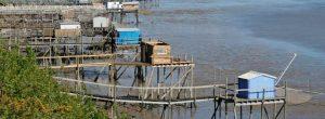 Carrelets et pontons de la presqu'île de Port des Barques